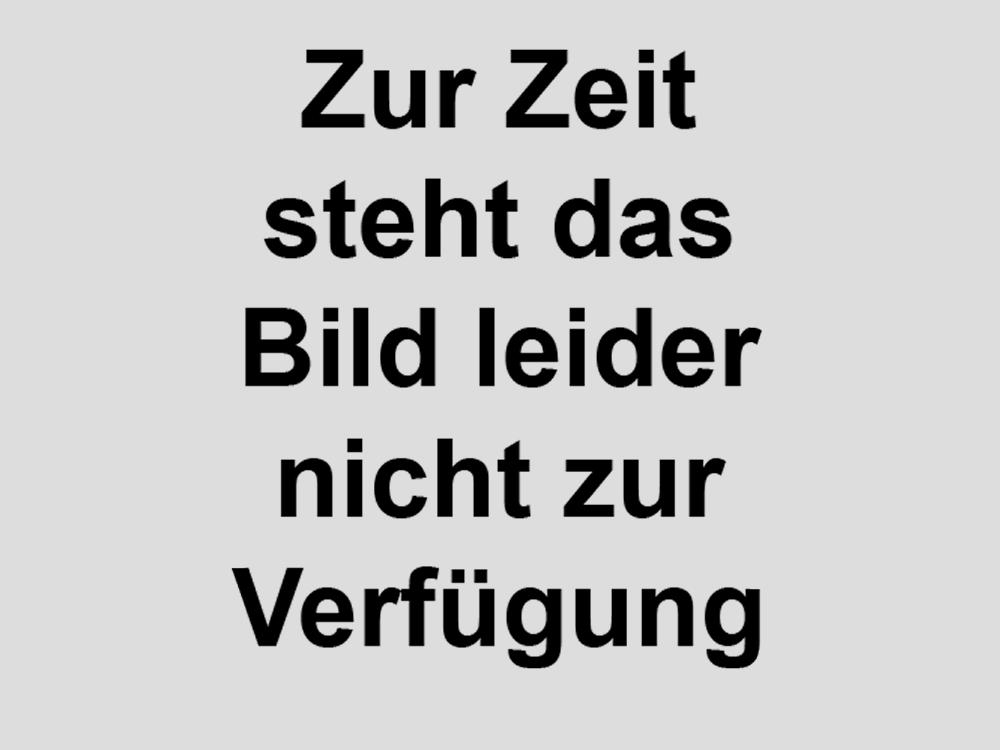 Schnecken_2b